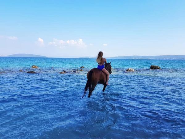 Reiten im Hinterland von Kastela sowie romantische Fotoshootings am Strand