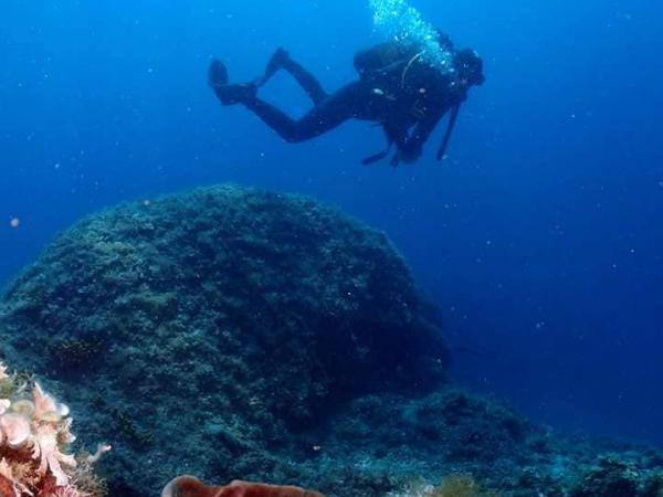 Erkundung der Unterwasserwelt Kroatiens und Bootsausflüge